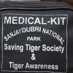 Tiger Awareness